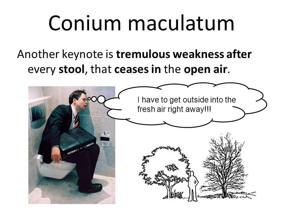 Conium maculatum Another keynote is tremulous weakness after every stool, that ceases in the open air.