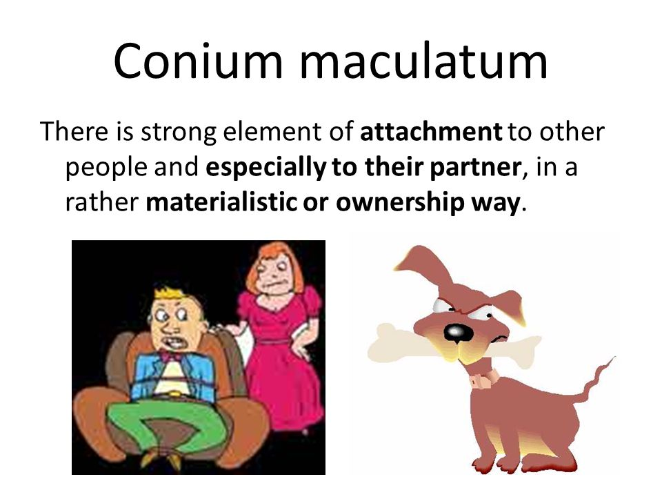 Conium maculatum There is strong element of attachment to other people and especially to their partner, in a rather materialistic or ownership way.