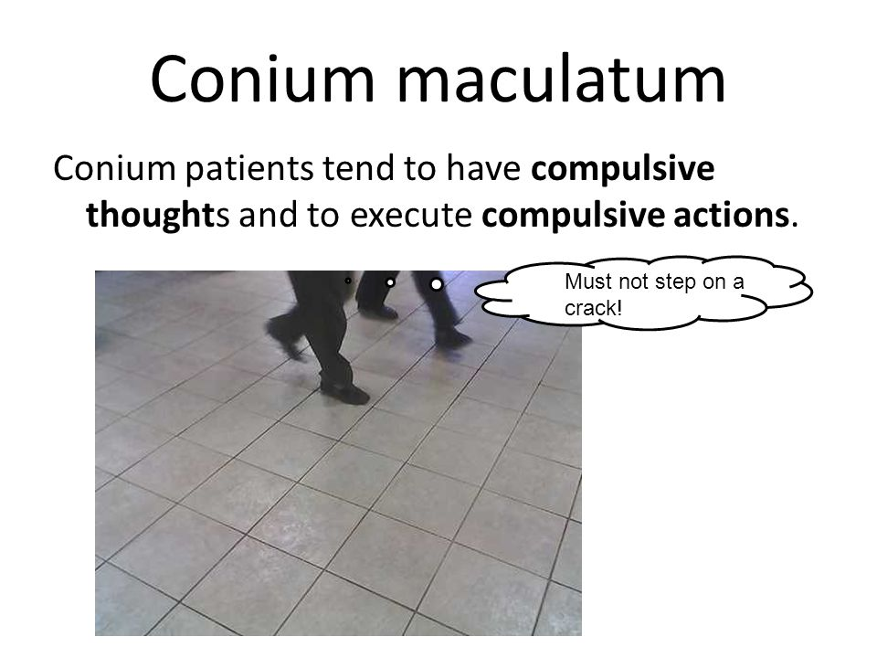 Conium maculatum Conium patients tend to have compulsive thoughts and to execute compulsive actions.