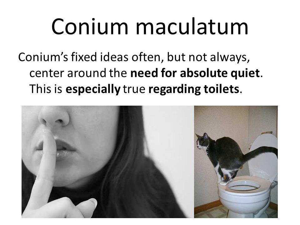 Conium maculatum Conium's fixed ideas often, but not always, center around the need for absolute quiet.
