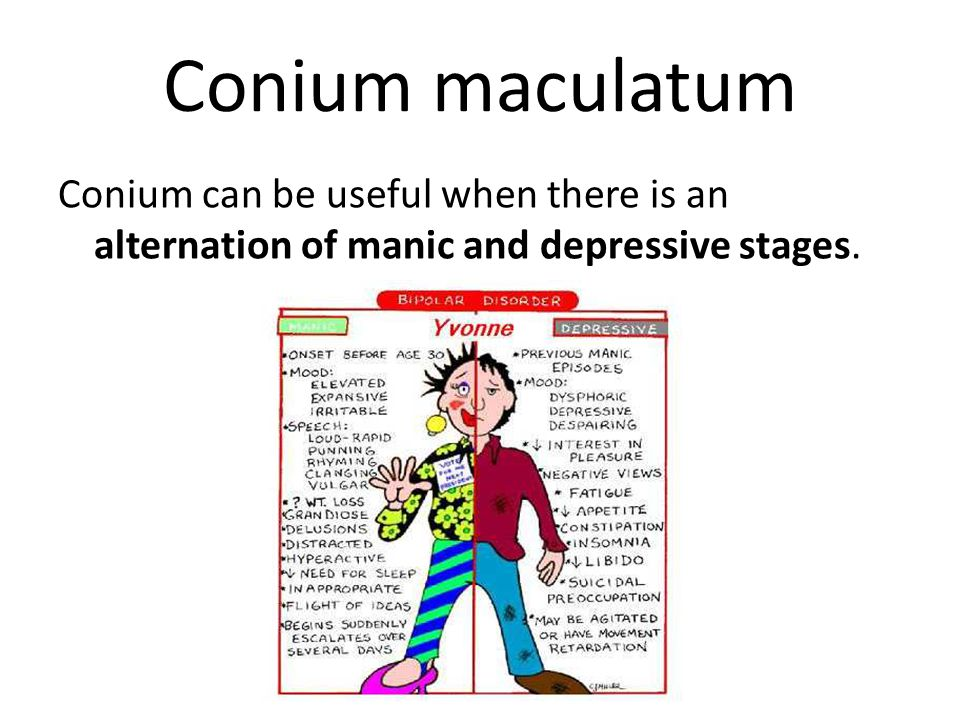 Conium maculatum Conium can be useful when there is an alternation of manic and depressive stages.