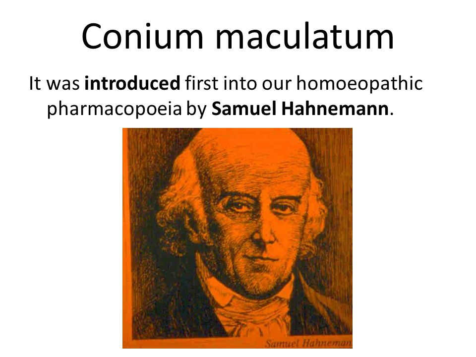 Conium maculatum It was introduced first into our homoeopathic pharmacopoeia by Samuel Hahnemann.