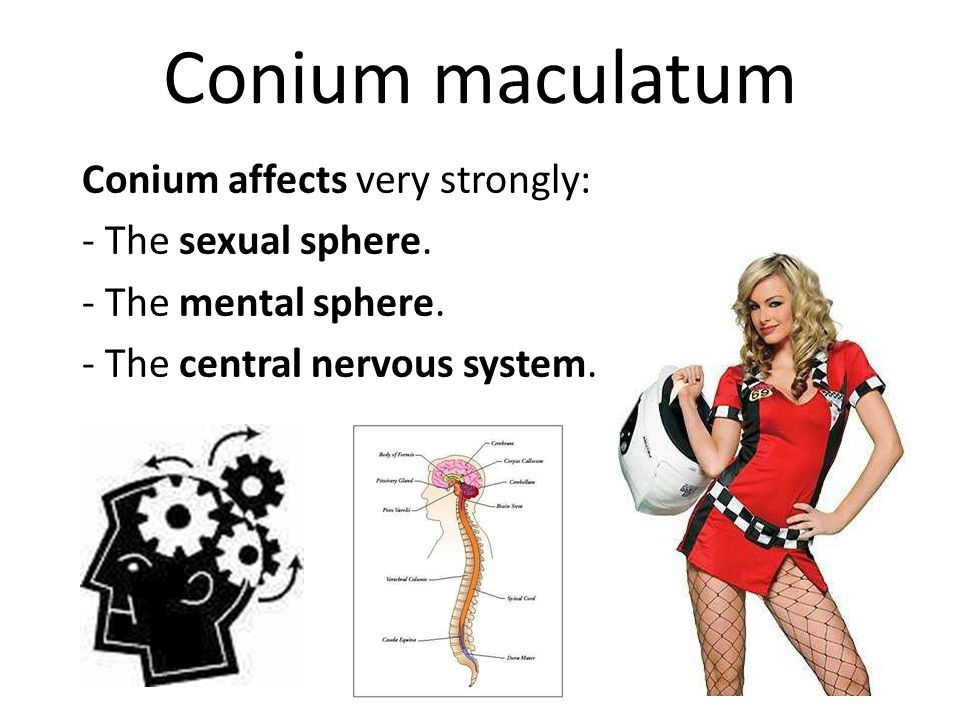 Conium maculatum Conium affects very strongly: - The sexual sphere.