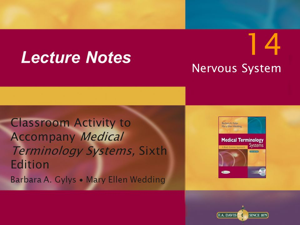 14 Lecture Notes Nervous System