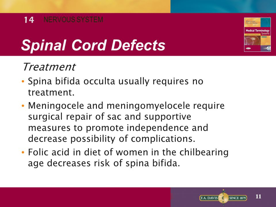 Spinal Cord Defects Treatment 14