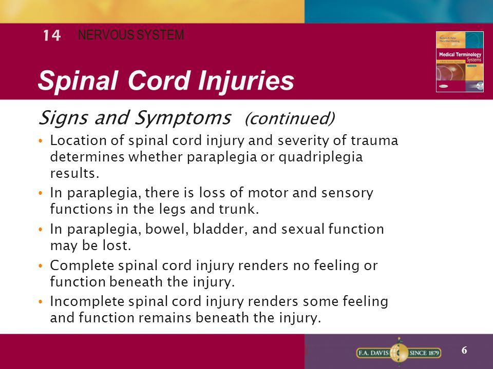 Spinal Cord Injuries Signs and Symptoms (continued) 14 NERVOUS SYSTEM