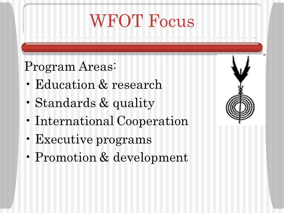 WFOT Focus Program Areas: Education & research Standards & quality