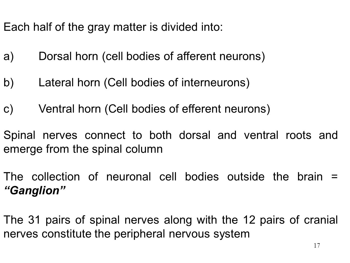 Each half of the gray matter is divided into: