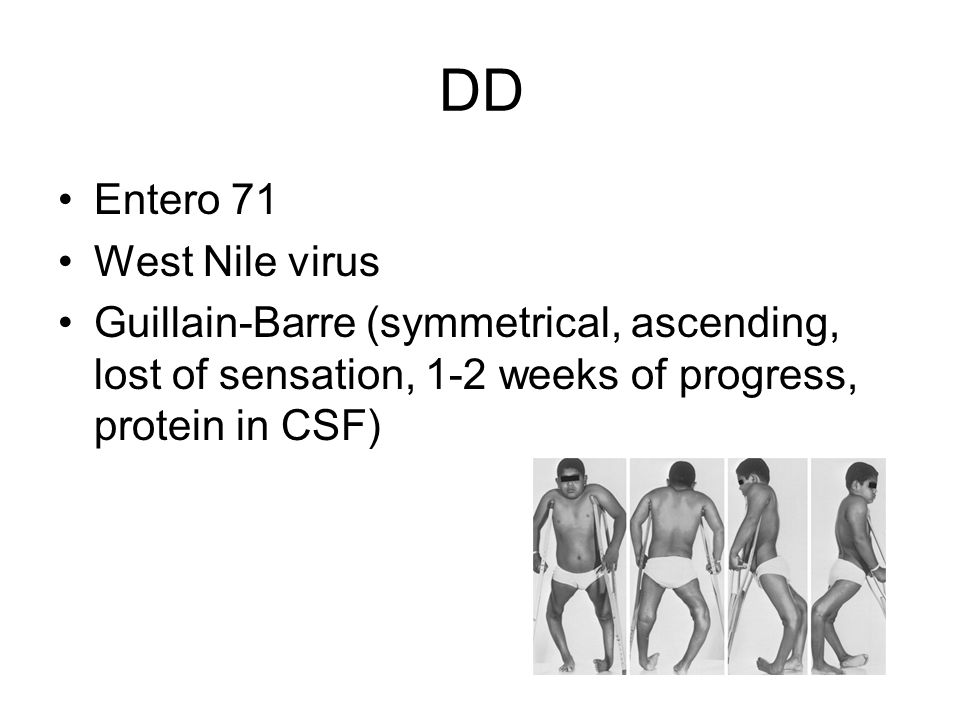 DD Entero 71 West Nile virus