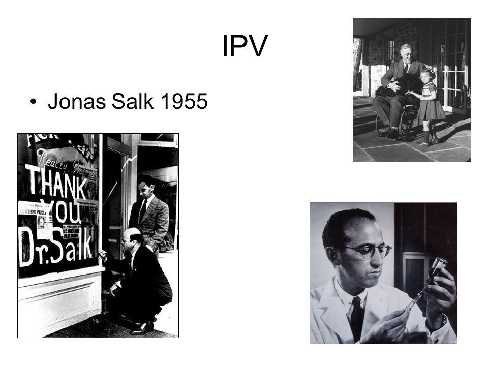 IPV Jonas Salk 1955