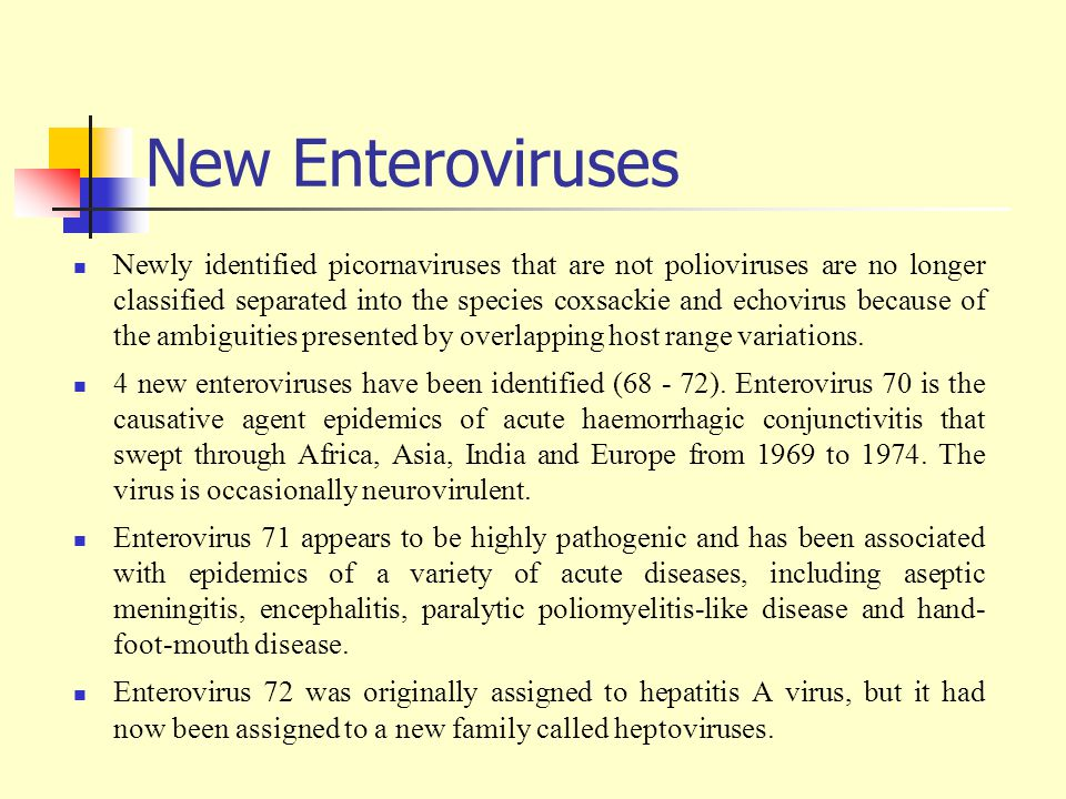 New Enteroviruses