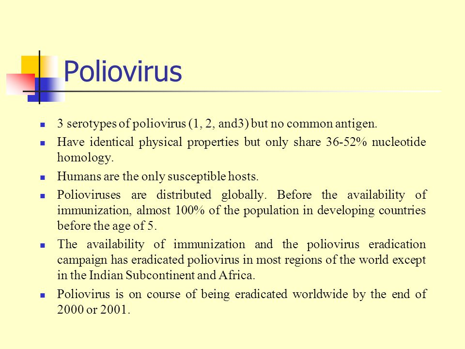 Poliovirus 3 serotypes of poliovirus (1, 2, and3) but no common antigen.