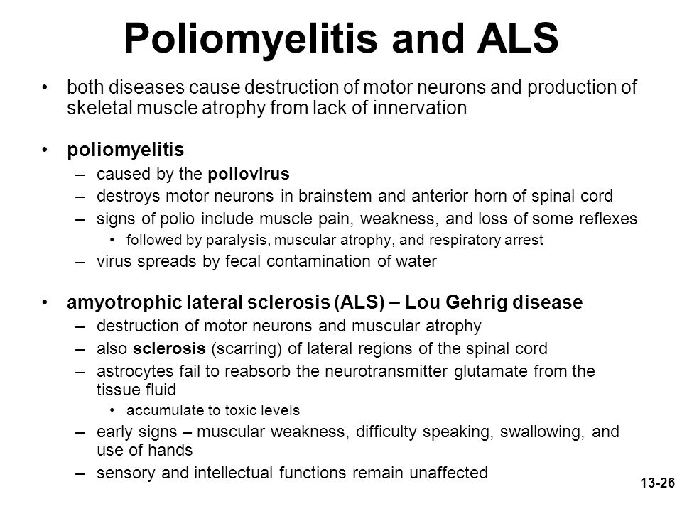 Poliomyelitis and ALS both diseases cause destruction of motor neurons and production of skeletal muscle atrophy from lack of innervation.