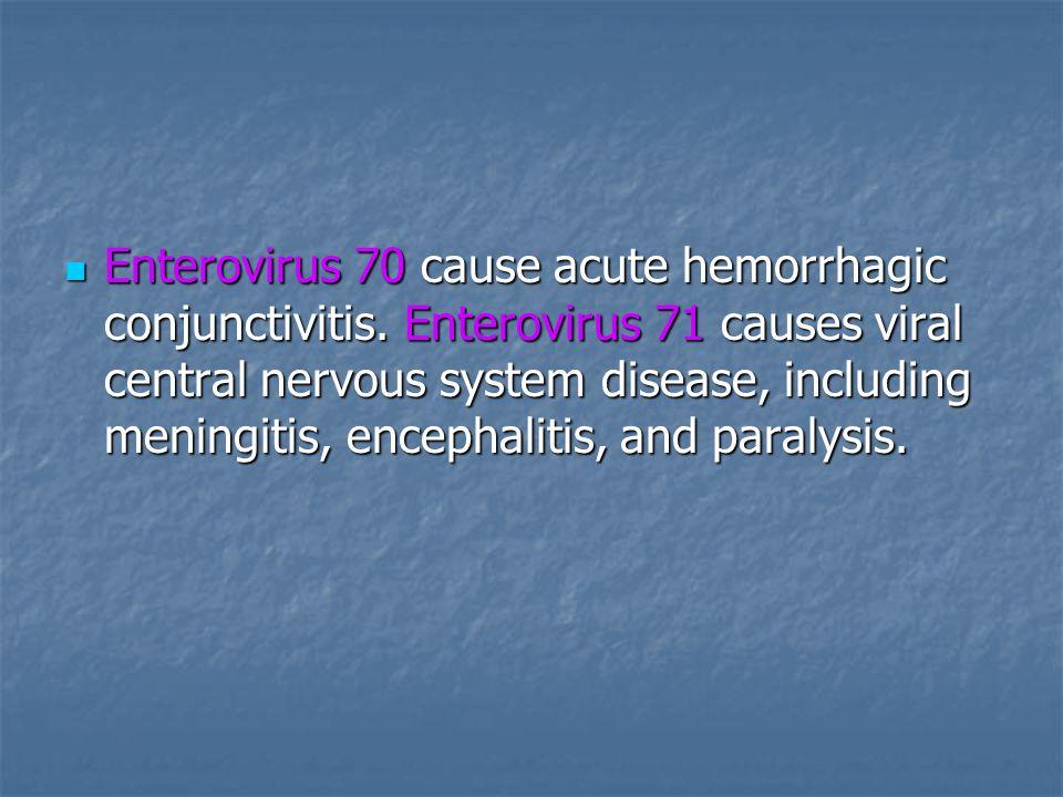 Enterovirus 70 cause acute hemorrhagic conjunctivitis