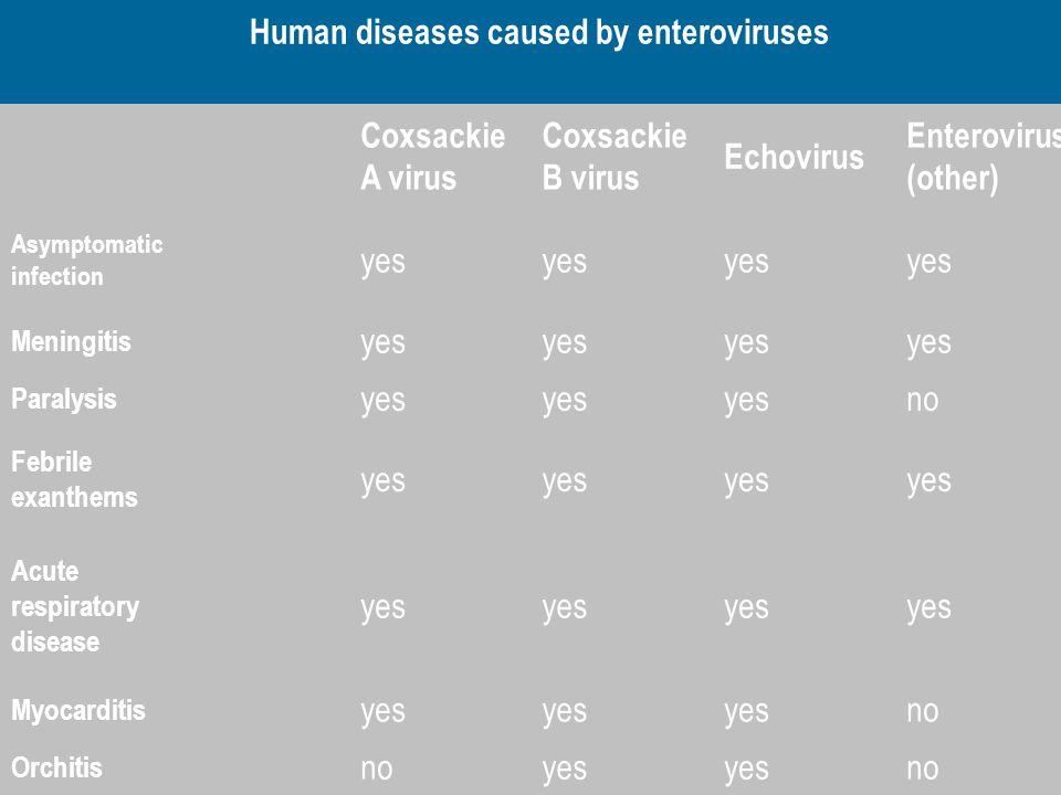 Human diseases caused by enteroviruses