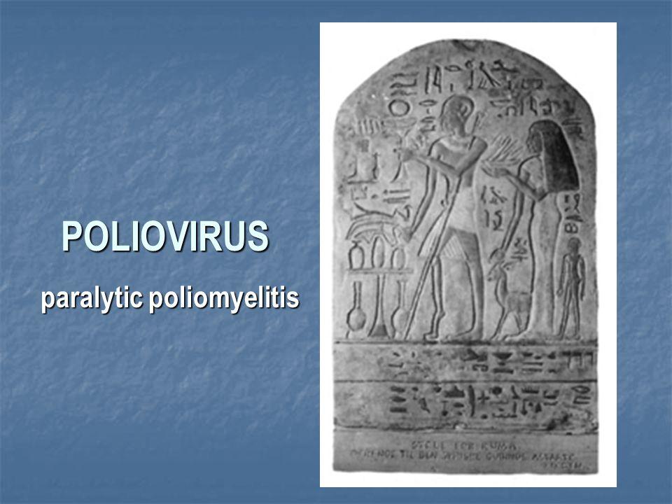 POLIOVIRUS paralytic poliomyelitis