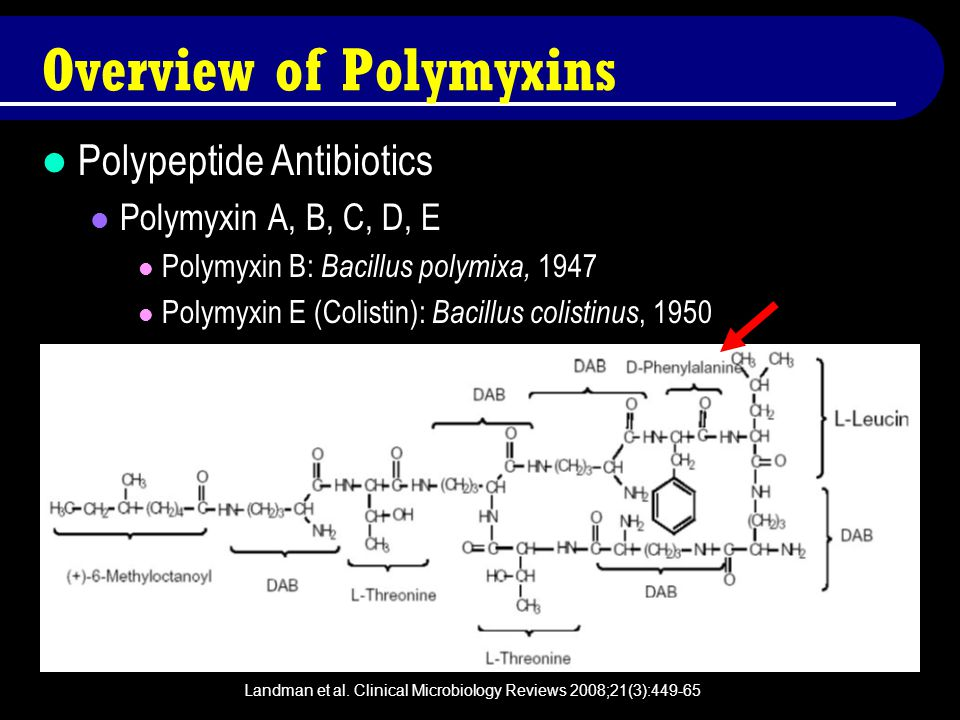 Overview of Polymyxins