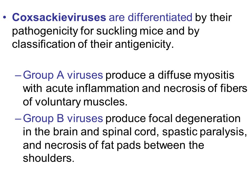 Coxsackieviruses are differentiated by their pathogenicity for suckling mice and by classification of their antigenicity.