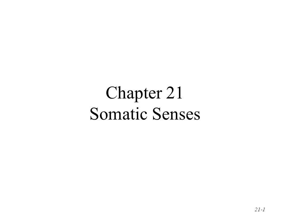 Chapter 21 Somatic Senses