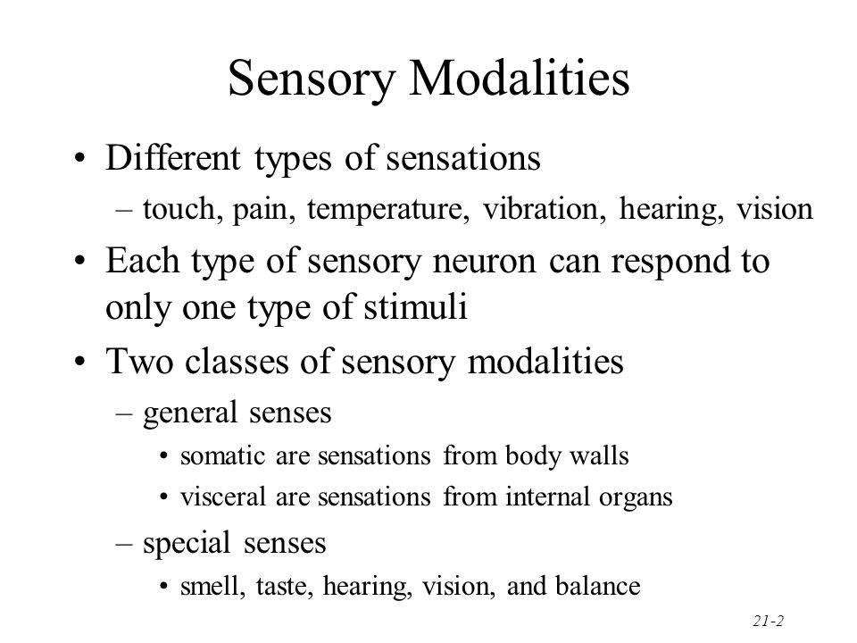 Sensory Modalities Different types of sensations