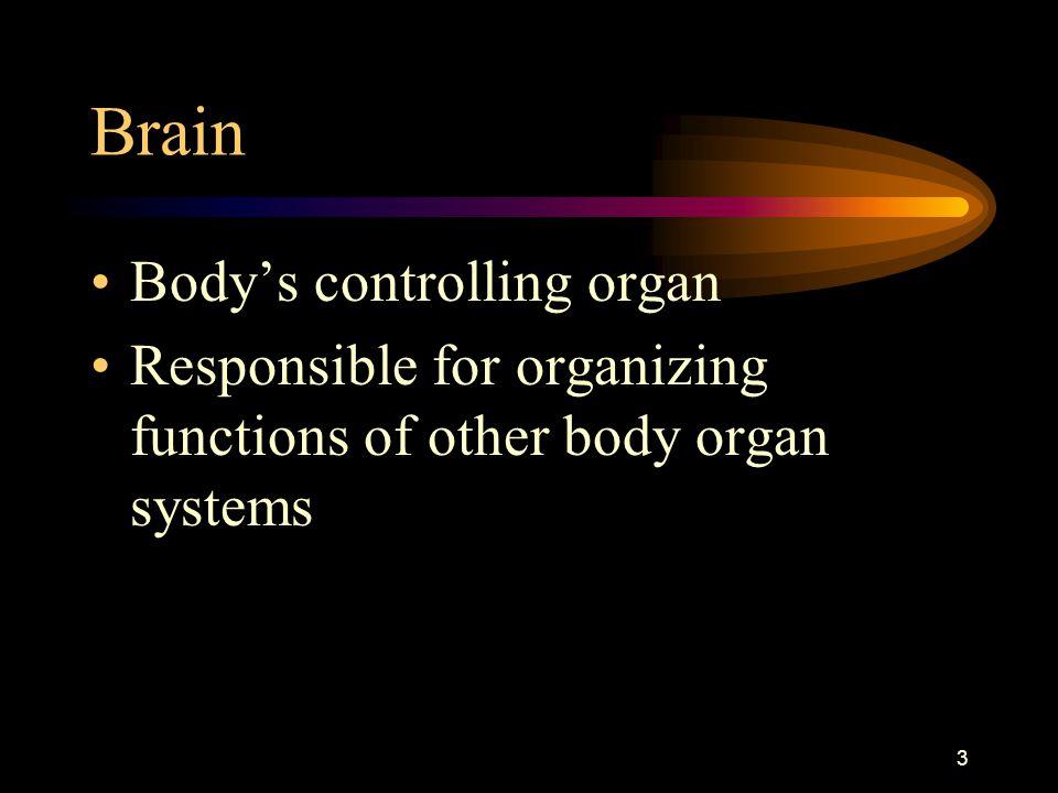Brain Body's controlling organ