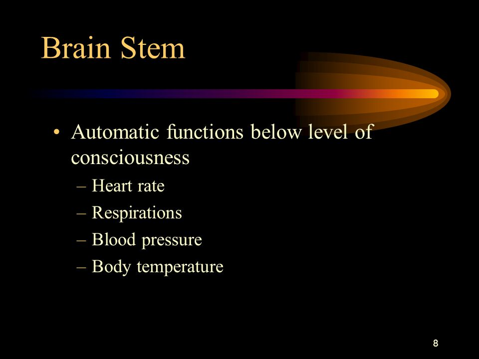Brain Stem Automatic functions below level of consciousness Heart rate