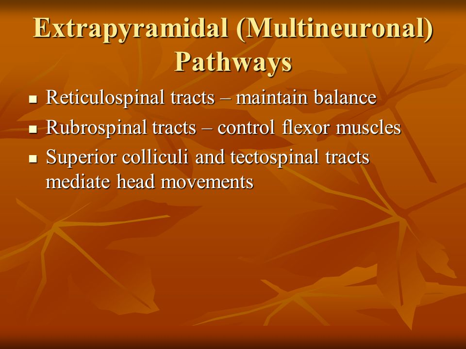 Extrapyramidal (Multineuronal) Pathways