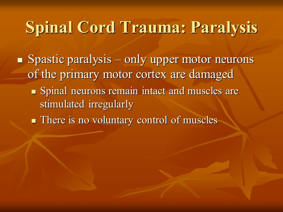 Spinal Cord Trauma: Paralysis