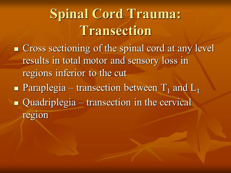 Spinal Cord Trauma: Transection
