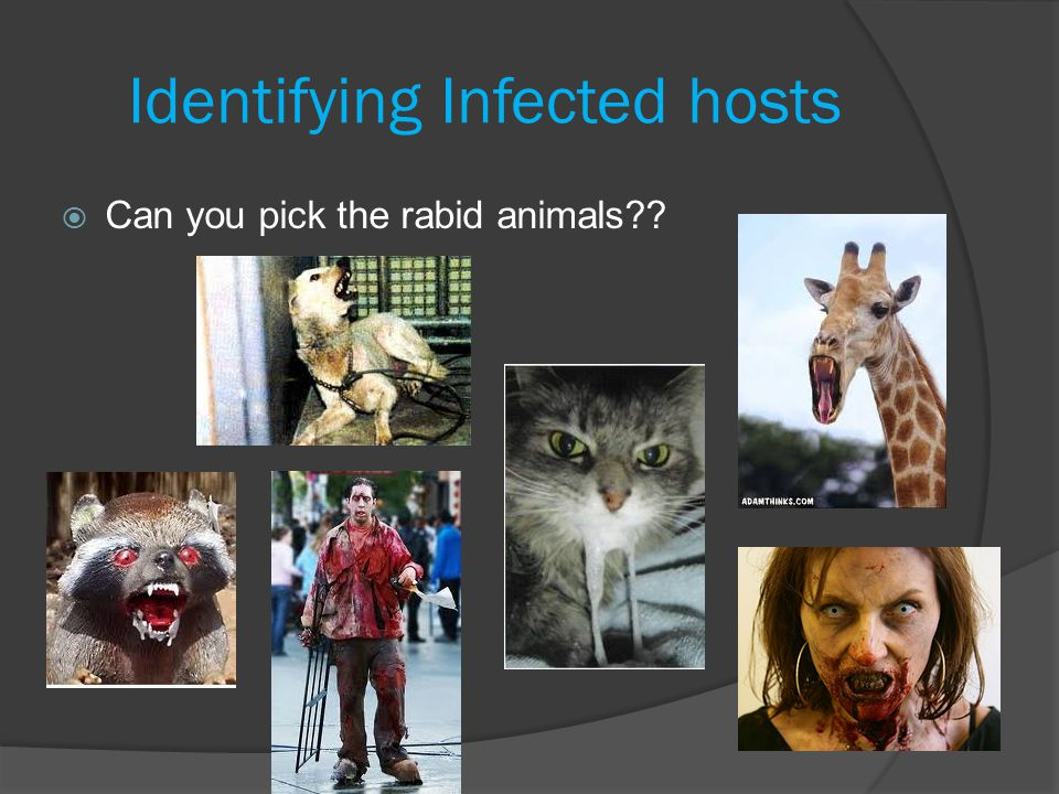 Identifying Infected hosts