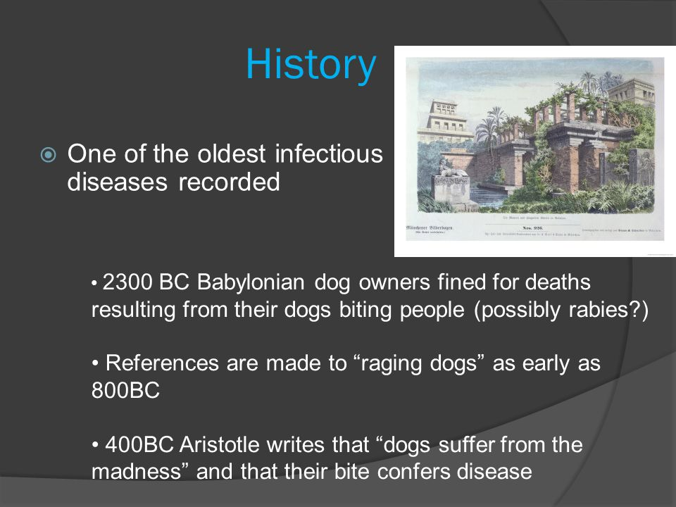 History One of the oldest infectious diseases recorded