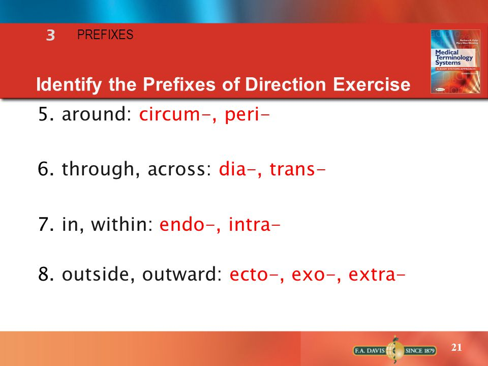 Identify the Prefixes of Direction Exercise