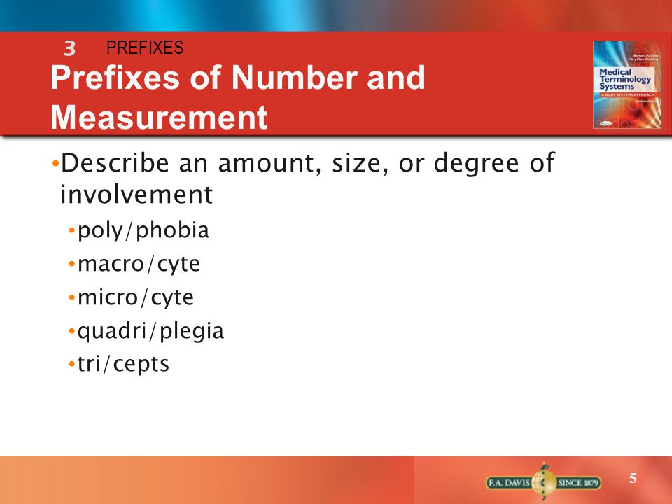 Prefixes of Number and Measurement