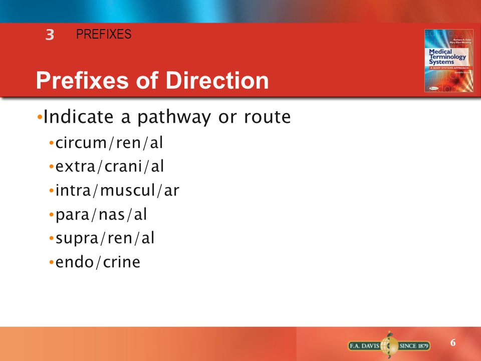 Prefixes of Direction Indicate a pathway or route 3 circum/ren/al