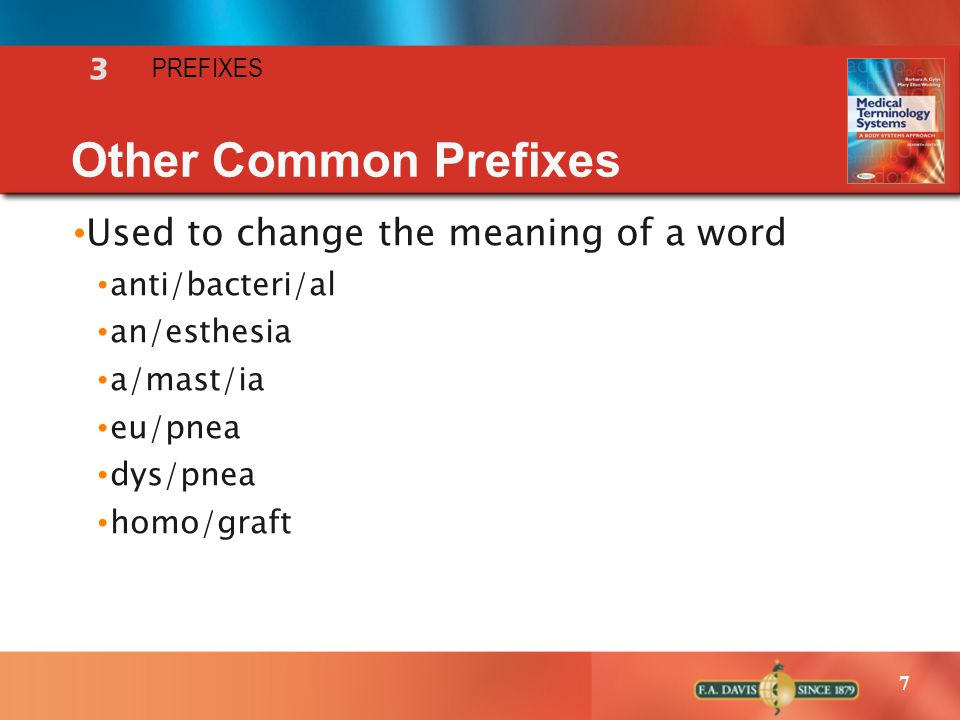 Other Common Prefixes Used to change the meaning of a word 3