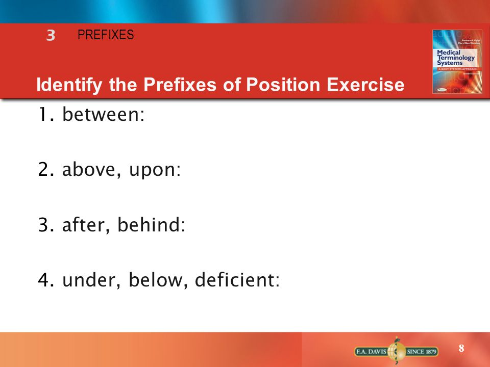 Identify the Prefixes of Position Exercise