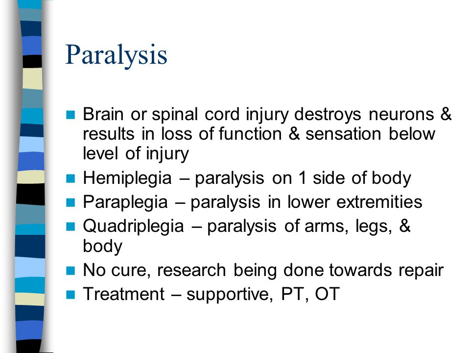 Paralysis Brain or spinal cord injury destroys neurons & results in loss of function & sensation below level of injury.