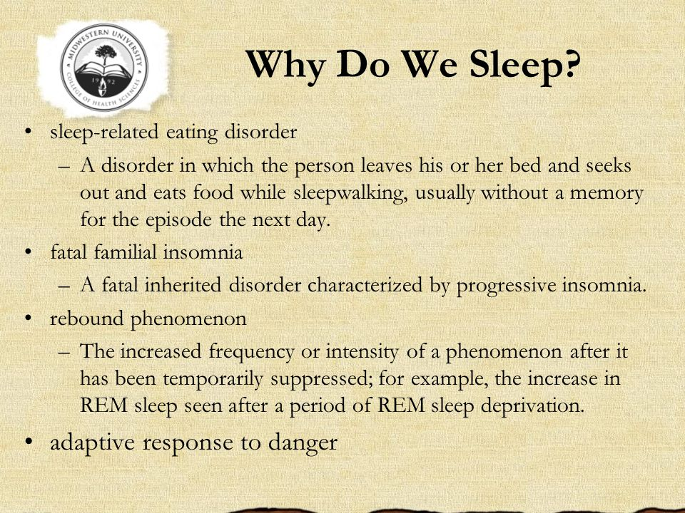 Why Do We Sleep adaptive response to danger