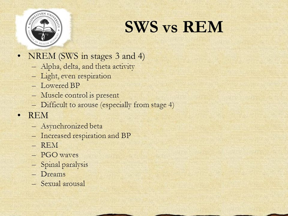 SWS vs REM NREM (SWS in stages 3 and 4) REM