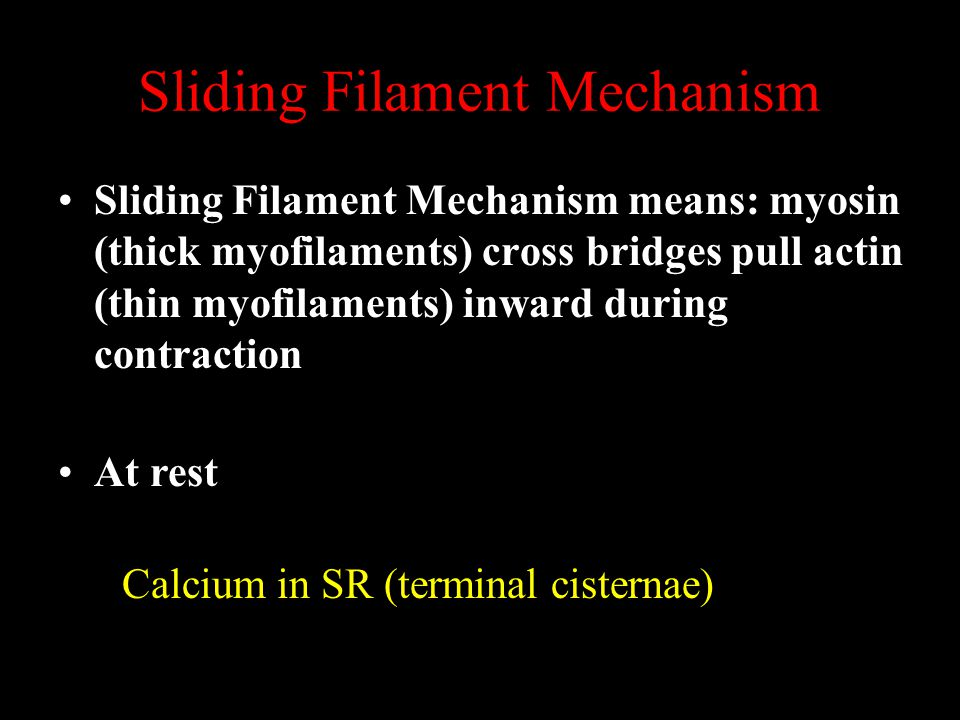 Sliding Filament Mechanism