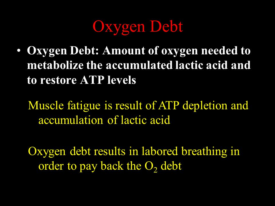 Oxygen Debt Oxygen Debt: Amount of oxygen needed to metabolize the accumulated lactic acid and to restore ATP levels.