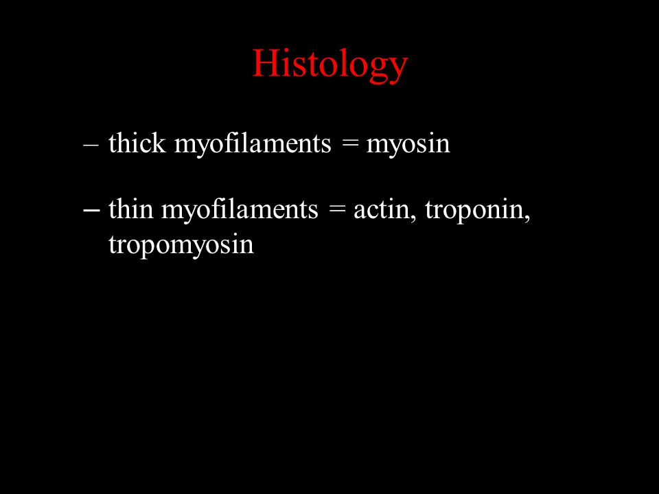 Histology thick myofilaments = myosin