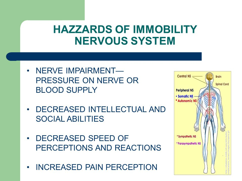 HAZZARDS OF IMMOBILITY NERVOUS SYSTEM