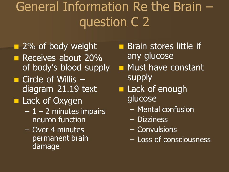 General Information Re the Brain – question C 2