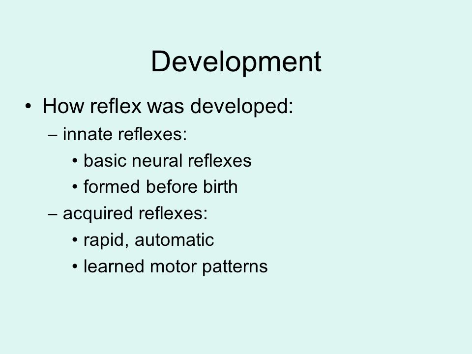 Development How reflex was developed: innate reflexes: