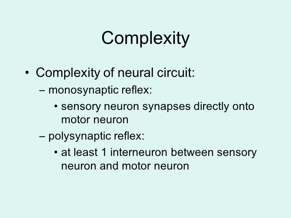 Complexity Complexity of neural circuit: monosynaptic reflex: