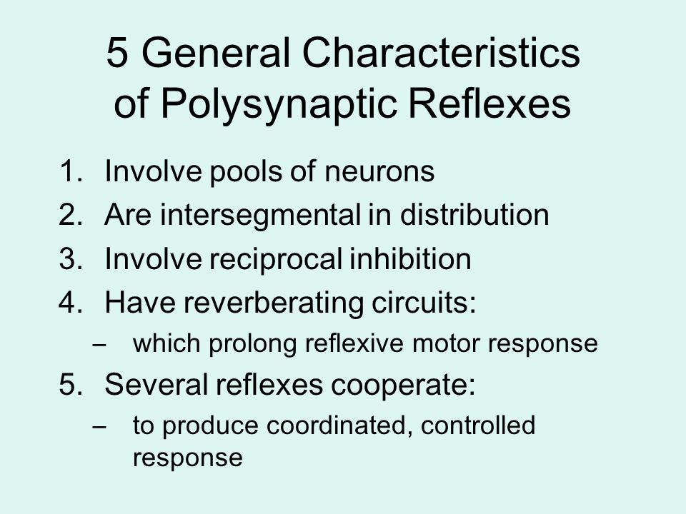 5 General Characteristics of Polysynaptic Reflexes