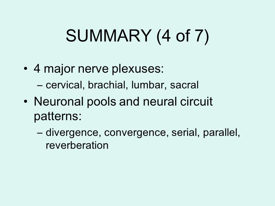 SUMMARY (4 of 7) 4 major nerve plexuses: