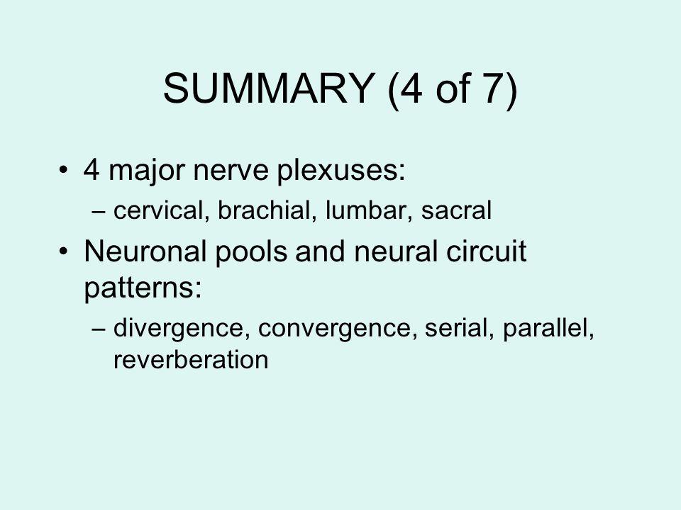 SUMMARY (4 of 7) 4 major nerve plexuses: