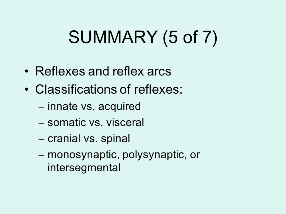 SUMMARY (5 of 7) Reflexes and reflex arcs Classifications of reflexes: